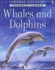 Discovery Program: Dolphins and Whales
