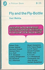 Fly and the Fly Bottle