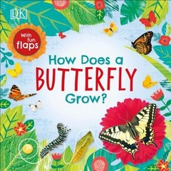 How Does a Butterfly Grow