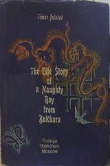 The Lite Story of a Naughty Boy from Bukhara