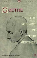 The Sorrows of Young Writers