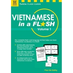 Vietnamese in a Flash