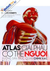 atlas-giai-phau-co-the-nguoi