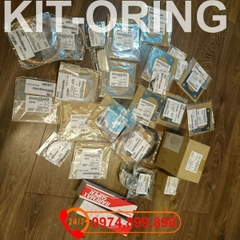 55172151 Flange packing KIT