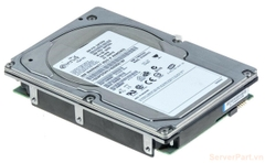 11695 Ổ cứng HDD scsi 80 pin IBM 36gb 10k 3.5