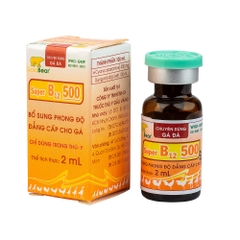 SUPER B12 500 (2ML/LỌ)