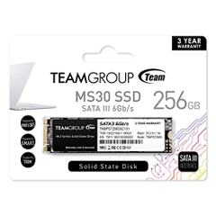 Team - SSD 256GB M.2 Sata3 for laptop. Model: MS30