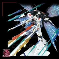 MG HIRM 1/100 DRAGON MOMOKO ZGMF-X20A STRIKE FREEDOM GUNDAM METAL FRAME + WING OF LIGHT +EFFECT PART