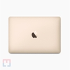 MacBook 2018 (MRQN2) Core m3/ 8Gb/ 256Gb - Chưa Active