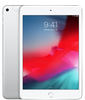 iPad Mini 5 2019 4G 256GB