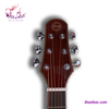 guitar-acoustic-hsy-green-sp000348